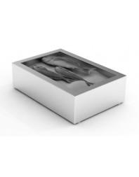 Bac à glace pilée inox poissonnerie - 1/1 GN - 402 x 590 x 170 mm