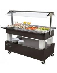 Salad'Bar réfrigéré 4 bacs GN 1/1 - central/mobile