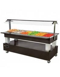 Salad'Bar réfrigéré 6 bacs GN 1/1 - central/mobile